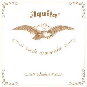 Aquila gut strings HT serie
