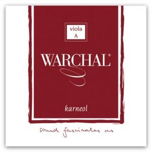 Karneol Set A-Metal-Ball, long scale