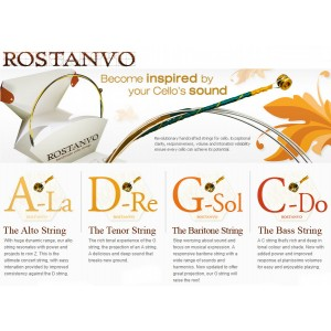 Rostanvo cello strings