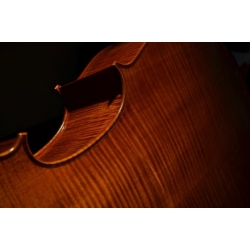 Eugene Holtier Violin Varnish System