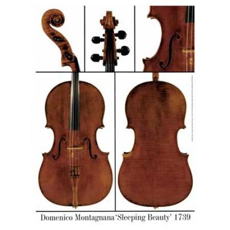 """Poster Montagnana Domenico cello, """"Sleeping Beauty"""" 1739"""