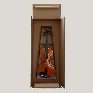 safe box violino/violin