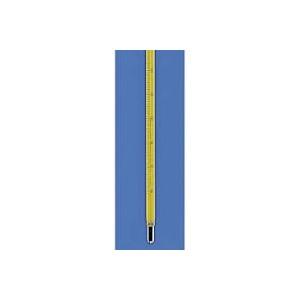 Termometro vetro pieno -10 + 360 gradi - Div.2 gradi - 1Pz